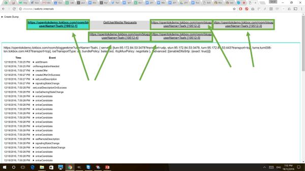Opentok demo webrtc-internals